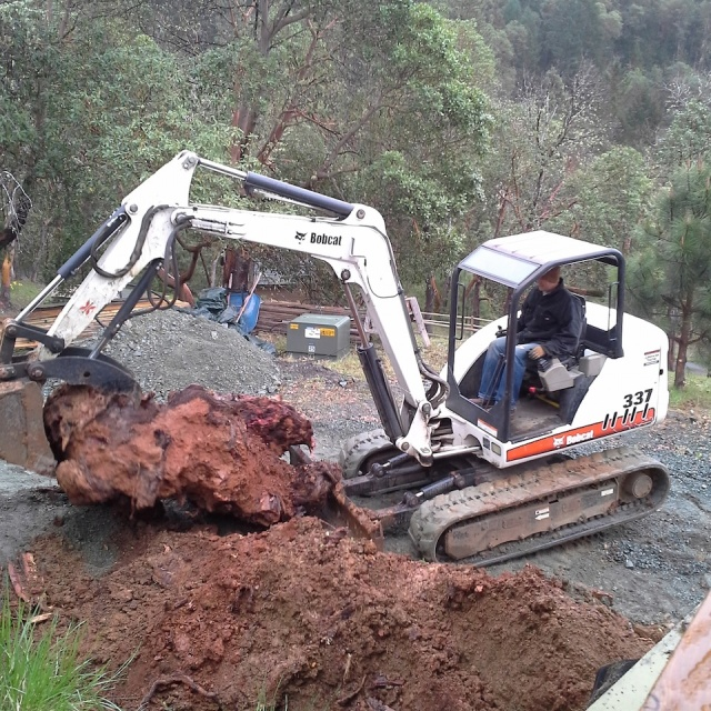Grants Pass – Stump Removal From Yard