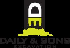 dse web logo new
